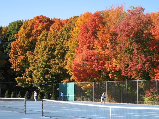 Tennis Courts located at 53 Lyme Street, Old Lyme